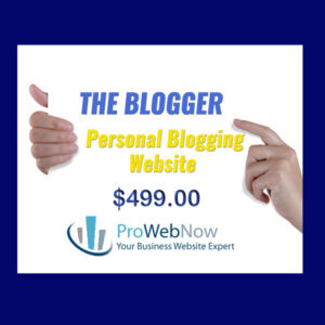 ProWebNow Blogger Website Package