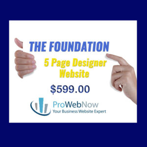 ProWebNow Foundation Website Package