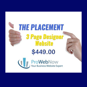ProWebNow Placement Website Package